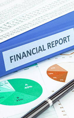 Internal Financial Statement and Management Reporting Preparation